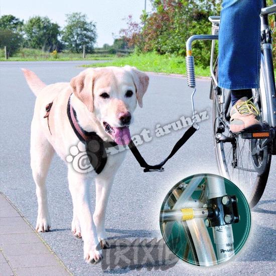 Kerékpárhoz vezető-, futtató póráz